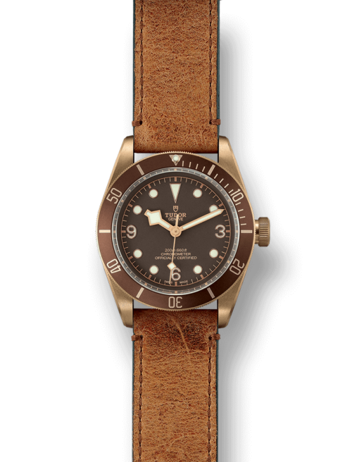 Tudor BlackBay Bronze